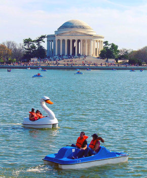 @markeisenhower - Tidal Basin paddleboats by Jefferson Memorial - Washington, DC
