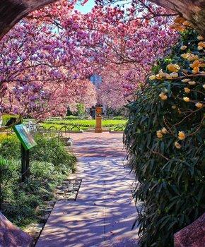@triphacksdc - Smithsonian Enid Haupt Garden - Gardens in Washington, DC