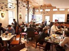 Oyamel Cocina Mexicana - Places to Eat in Washington, DC