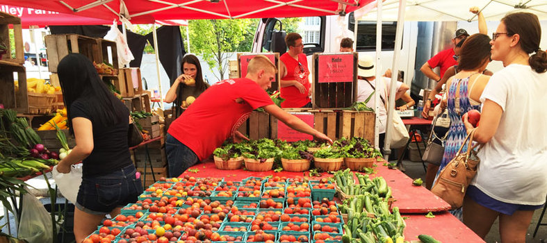 Eat healthy at the Dupont Circle farmers' market