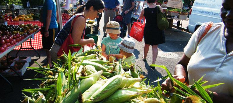 Bloomingdale Farmers' Market