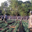 The Korean War Veterans Memorial on the National Mall - Monuments and memorials in Washington, DC